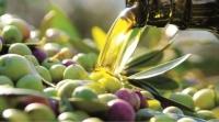 Parovel – olívaolaj kóstoló